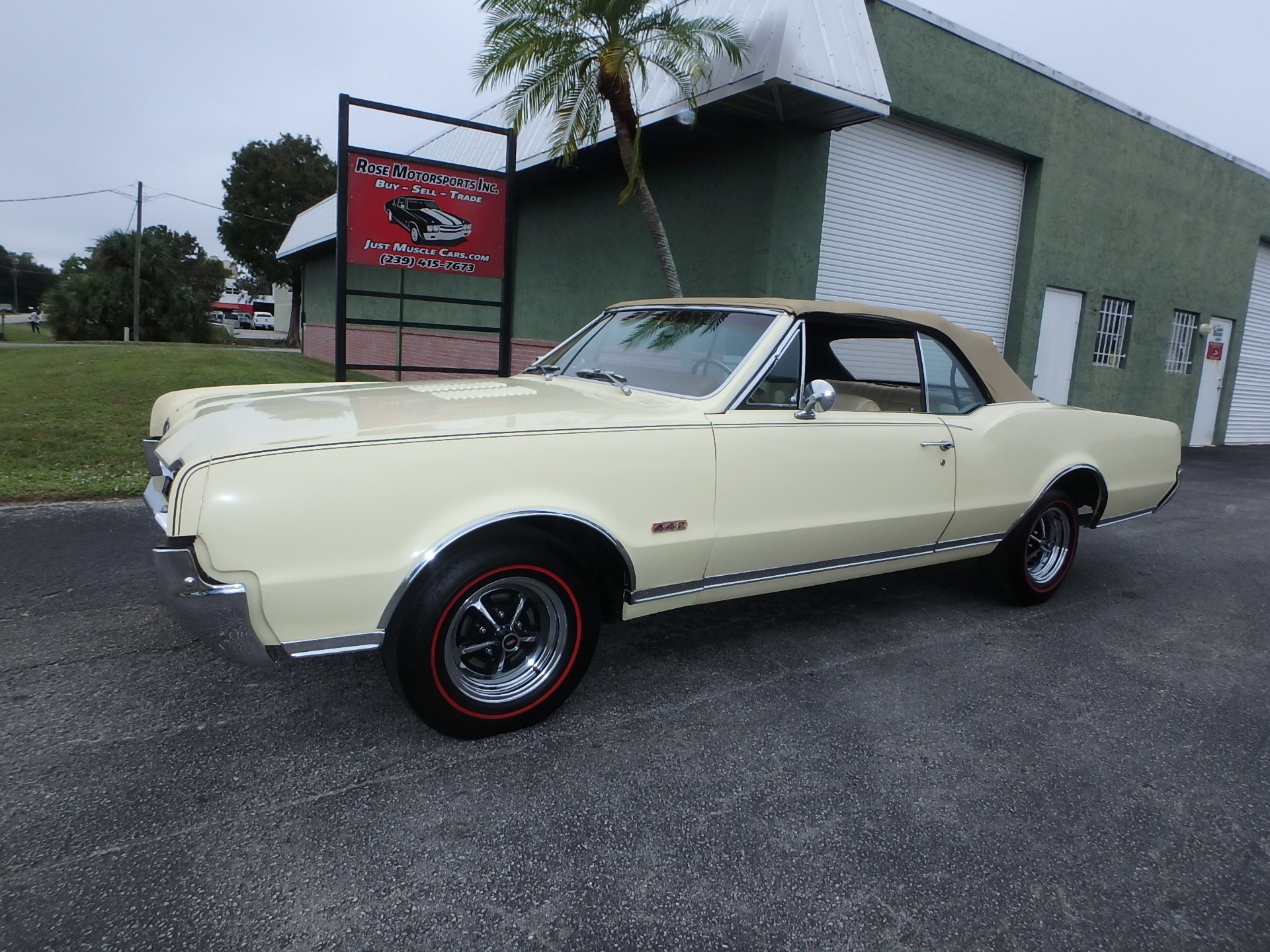 Used 1967 Olds 442 Convertible