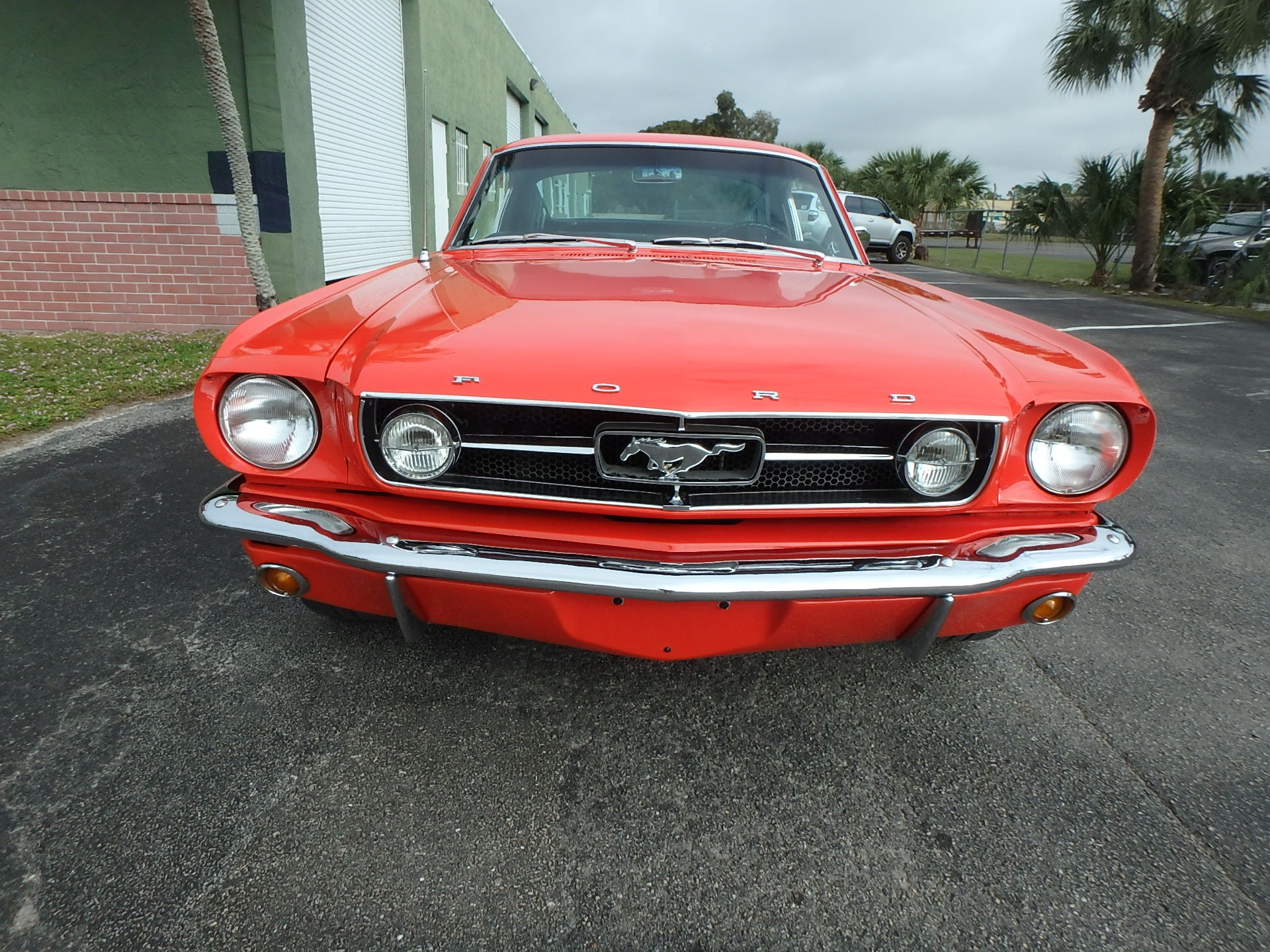 Used 1965 Ford Mustang Fastback 2x2