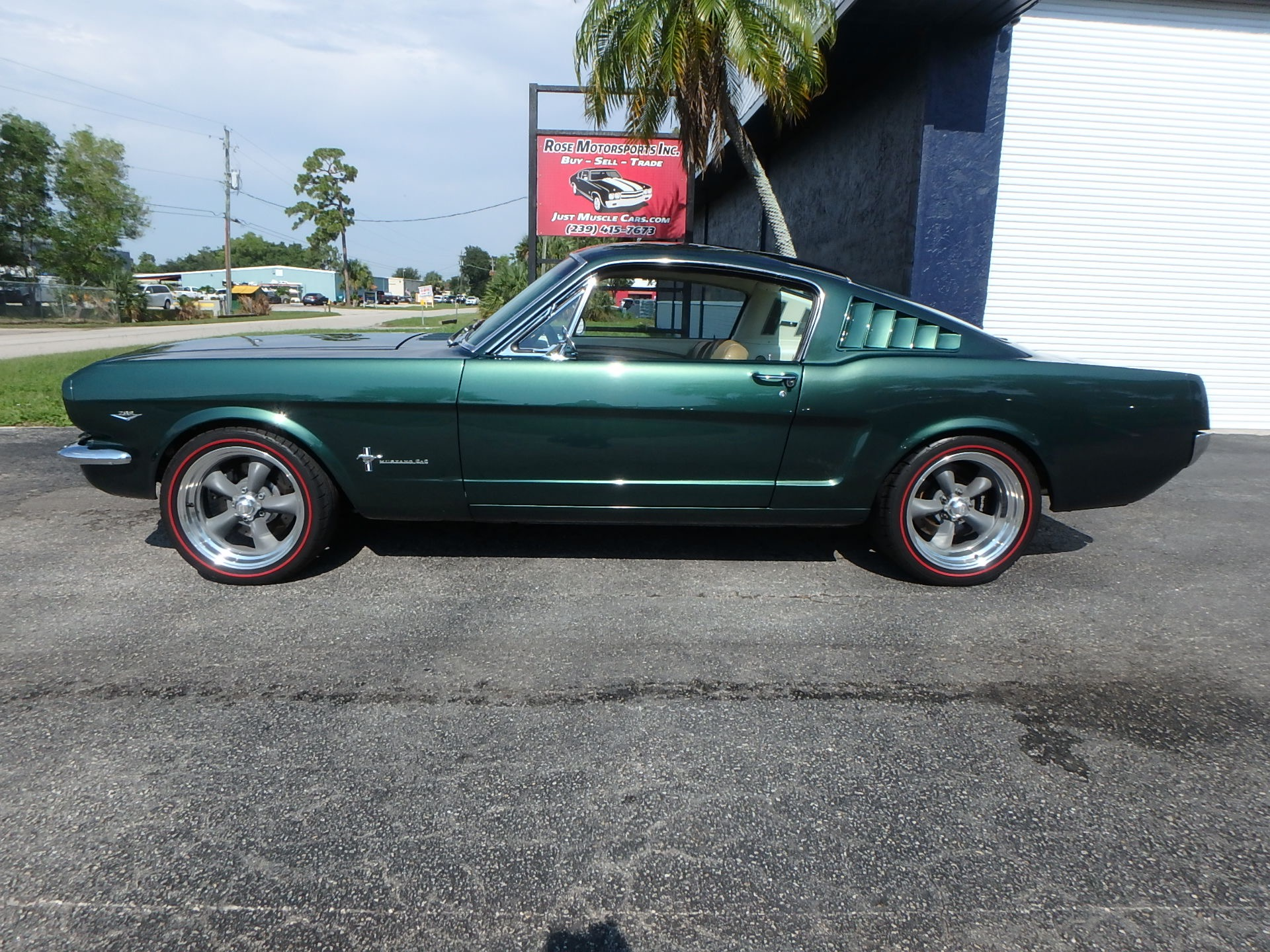 Used 1966 Ford Mustang Fastback