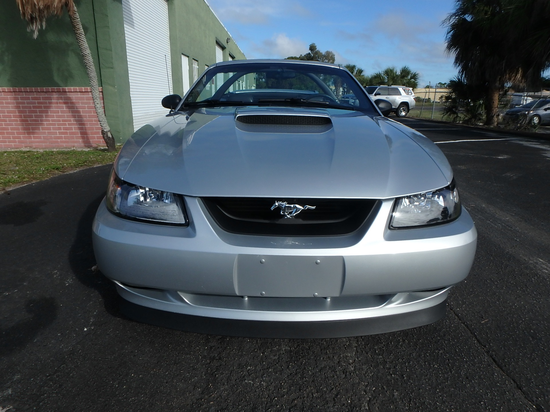 used 2000 ford mustang gt for sale 9 900 rose motorsports inc stock 2422 used 2000 ford mustang gt for sale 9